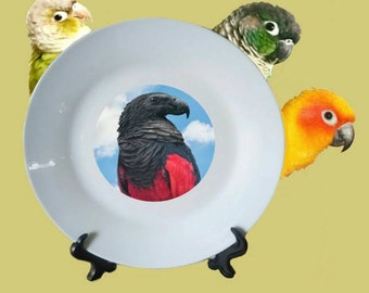 "Pesquet's Parrot Vulturine Parrot Bird Blue Sky Clouds White Decorative Ceramic 8"" Plate and Display Stand"
