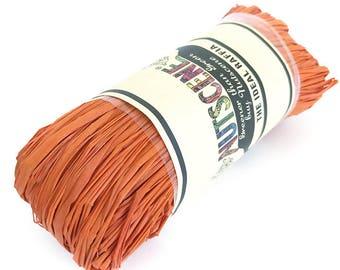 Nutscene Raffia (50g) - Orange