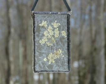 Pressed flower terrarium, stained glass suncatcher, Queen Annes lace dried flower art, window decoration, nature decor