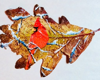 Cardinal painted oak leaf
