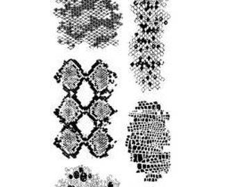 "Inkadinkado ""Snakeskins"" - Clear stamps"