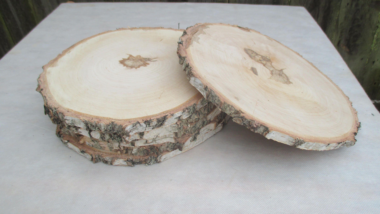 11 inch Birch Slice,Large Wood Slice, 11\