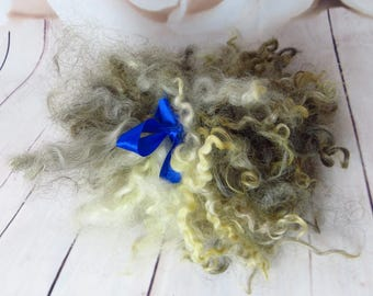 Leicester multicolor washed Locks Curls Leicester multicolor Locks Spinning Doll Hair Felting Wool Fiber Art Supplies Approx 15-17 cm 30 gr