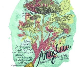 Angelica Fine Art Silkscreen Print // Handmade Art Print // Plant Magic Art // Botanical Illustration