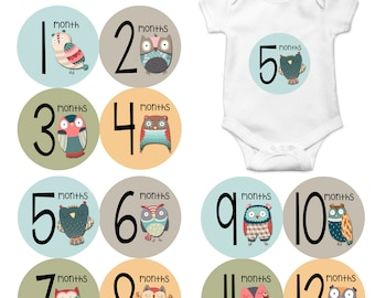 Monthly Baby Sticker Baby Boy | Baby Girl | Baby Month Stickers | Baby Milestone Sticker | 12 Month Stickers | Photo Prop | Owls 1172