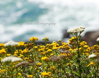 Flowers at the Sea, Photography, Home Decor