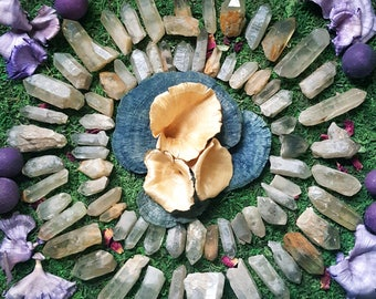 Natural Tibetan Citrine Points    3 Sizes Available   Ultimate Prosperity & Vitality Stones   Soft Smoky Lemon Color   Unheated Citrine