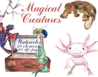 18 Digital  Watercolor Magical Creatures clip art, fantasic Digital Collage,  Instant Download, clip 64