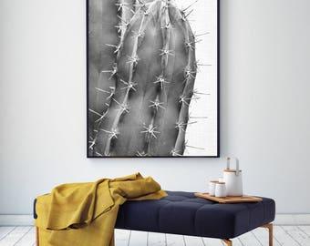 50%OFF,  Cactus Print Cactus Wall Art Modern Poster Cactus Decor Digital Download Printable Art Instant Download