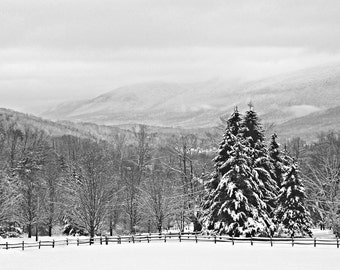 Snow on Firs, Fence, and Mountains, Nature Art Photo Print, Black and White, Winter Landscape, Manchester, Vermont