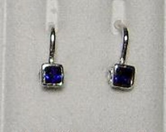 New 14k White Gold Princess-Cut Blue Sapphire Euro-back Earrings-Free Shipping!
