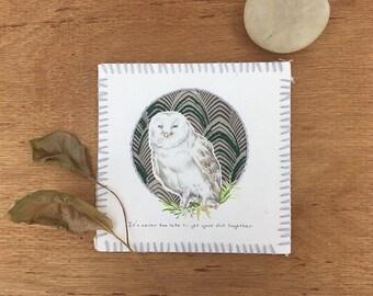 Owl Illustrated Postcard