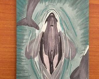 Collectible Orca Dolphin Ocean Art Card