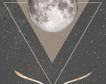 Night Flight - Owl Digital Download