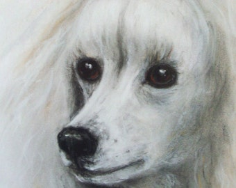 "Original Pastel Painting, Poodle Portrait, ""ANNETTE"" One of a kind, 16"" x 20"", Framed and Ready"