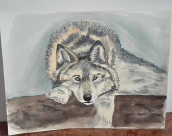 wolf lying down, original watercolor painting