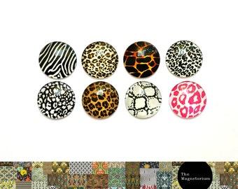 Animal Print Magnets [Fridge Magnets, Fridge Magnet Sets, Refrigerator Magnets, Magnet Sets, Office Decor, Kitchen Decor, Magnetic Board]