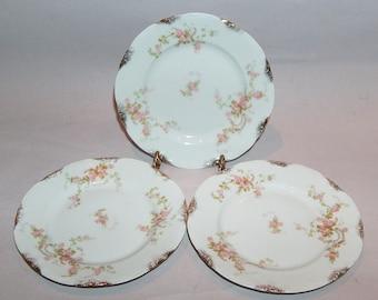 8160: Vintage Warwick Old Abbey SET 3 Bread & Butter Plates Pink Roses Fine China Porcelain at Vintageway Furniture
