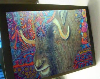 greeting card print of original art- musk ox zentangle spirit animal