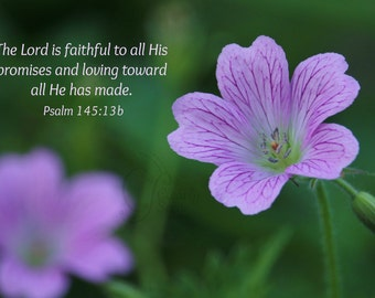 18. Purple Flower; Photo greeting card; Nature art print; Gift; Inspirational Scripture Psalm 145:13