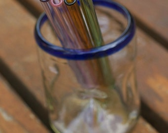 Eco Glass Straw - Polychrome Set 2 - 4 Boro Glass Straws - Lifetime Guarantee - Sip in Colorful Eco Style