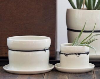 Medium Porcelain Planters with Black Linen