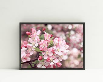 Cherry Blossom Nature Photography - Digital Download - Printable Art - Home Decor - Gift for Her - Cherry Blossom