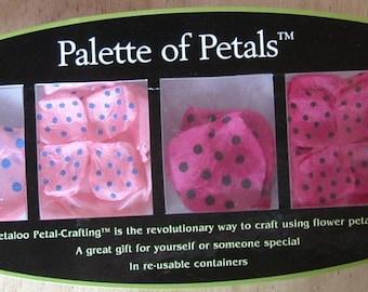 Palette of Petals