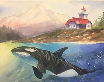 San Juan Orca