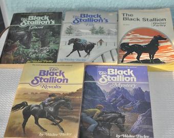 Five Books Of The Black Stallion's Series