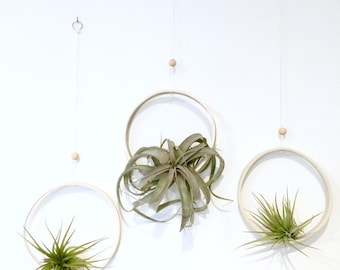 Extra Large Airplant Ring Cradle Sling Hanging Planter Display for Air Plant MADE TO ORDER
