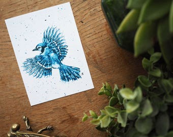 Blue Jay Art Print, Bird Art. Blue Jay Paint Splatter Painting Print. Bird Art Original Print. Wildlife Art.