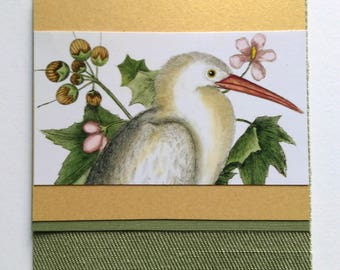 long beaked bird  card