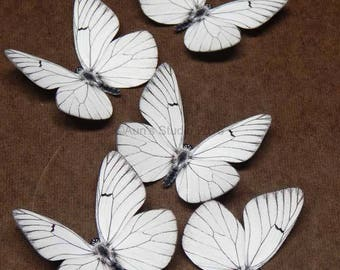 White paper butterflies, realistic paper butterfly cutouts, 5 pieces