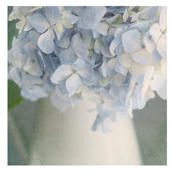 """Nature Photography, Blue Hydrangea Print, Floral Wall Art, Home Decor Print, Blue and Ivory,  """"Summertime Blues"""""""