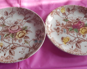 Nasco Rose Arbor Plates Japan set of 2