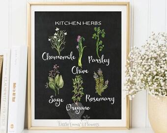Basil Herbs kitchen print Basil wall art decor poster herbs print kitchen decor printable garden plants culinary print art 184