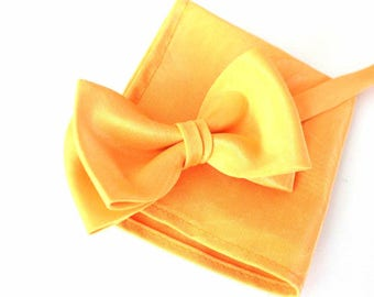 bow tie with handkerchief in peach as set