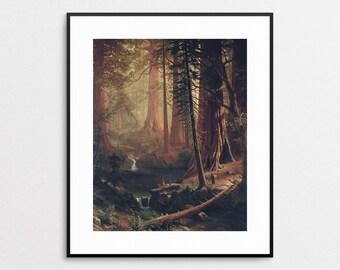 Redwood Forest by Albert Bierstadt - California Wall Art - Redwood Art - Redwood Print - Redwood Painting - Forest Painting - Redwoods Art