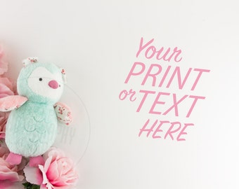 Print Background / Styled Stock Photography / Product Photography / Staged Photography / Product Background / Desktop / Pink / Cute / DGR003