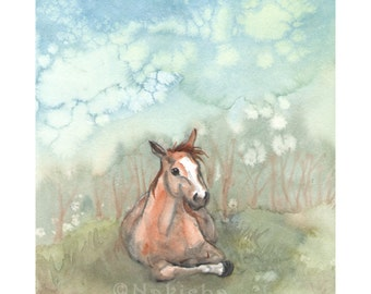 Fine Art Print - Horse Art - Resting Pony