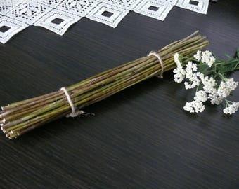 Yarrow stalks, I Ching, dried yarrow, yarrow sticks.
