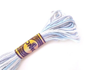 DMC 4010 Variegated 6 Strand Floss Winter Sky