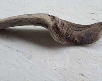 Curved Textured Driftwood Piece ,  coastal Accent , Drift wood Decor , naurical art