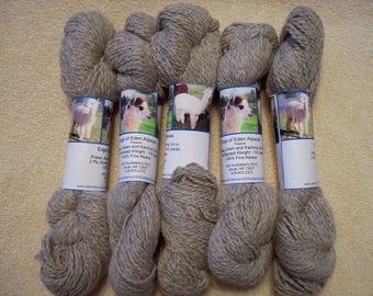Alpaca Yarn – Praise, Adam, and Kachina (2 ply worsted weight)