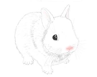 Little easter rabbit hand drawn watercolor illustration