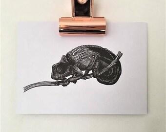 Chameleon hand drawn pen and ink illustration, Chameleon gifts reptile art
