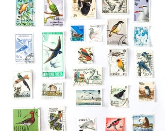 25 x Bird postage stamps - all different from 21 countries, off paper - Tropical Garden Birds of Prey - for collecting, crafts, scrapbooking