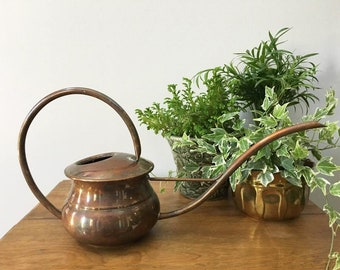 Mid Century Watering Can / Long Skinny Spout / High Arched Handle / Terrarium Supply / Indoor Gardening / Vintage Water Can