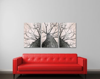 Tree Canvas Art, Neutral Art, Large Wall Art, Canvas Art Set, Triptych Wall Art Set, Forest Photography, Large Art Set, Bare Tree, Branches